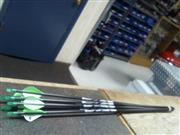 BEMAN Archery Accessory HUNTER CLASSIC ARROWS HUNTERS CLASSIC ARROWS carbon fibe